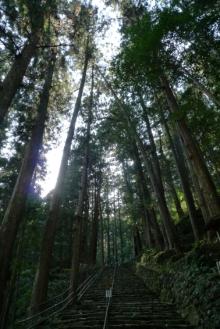 ばんちゃんの旅案内 -日本全国自走の旅--那智の滝参道