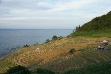 ばんちゃんの旅案内 -日本全国自走の旅--白米千枚田