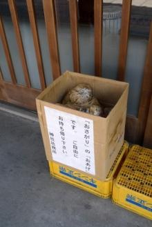 ばんちゃんの旅案内 -日本全国自走の旅--お下がりのおあげ