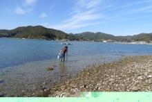 ばんちゃんの旅案内 -日本全国自走の旅--採集風景