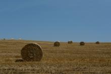 ばんちゃんの旅案内 -日本全国自走の旅--牧草ロール