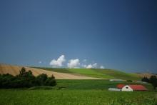 ばんちゃんの旅案内 -日本全国自走の旅--美瑛の田園風景
