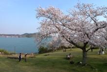 ばんちゃんの旅案内 -日本全国自走の旅--浜名湖サービスエリア