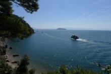 ばんちゃんの旅案内 -日本全国自走の旅--お花見遊覧船