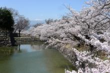 ばんちゃんの旅案内 -日本全国自走の旅--松本城のお堀