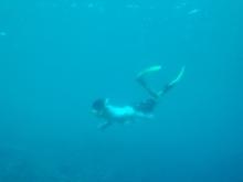 ばんちゃんの旅案内 -日本全国自走の旅--海の日企画-海中