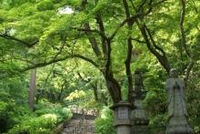 ばんちゃんの旅案内 -日本全国自走の旅--境内 長谷寺