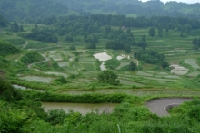 ばんちゃんの旅案内 -日本全国自走の旅--星峠の棚田