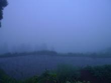 ばんちゃんの旅案内 -日本全国自走の旅--星峠の棚田 朝