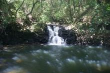 ばんちゃんの旅案内 -日本全国自走の旅--男淵の滝