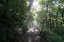 ばんちゃんの旅案内 -日本全国自走の旅--登山道
