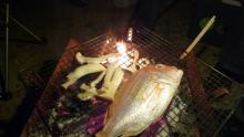 ばんちゃんの旅案内 -日本全国自走の旅--連子鯛