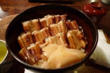 ばんちゃんの旅案内 -日本全国自走の旅--うえののアナゴ丼