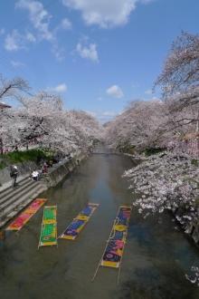 ばんちゃんの旅案内 -日本全国自走の旅--のんぼり洗い