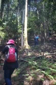 ばんちゃんの旅案内 -日本全国自走の旅--入道ヶ岳登山