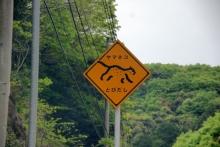 ばんちゃんの旅案内 -日本全国自走の旅--やまねこ注意