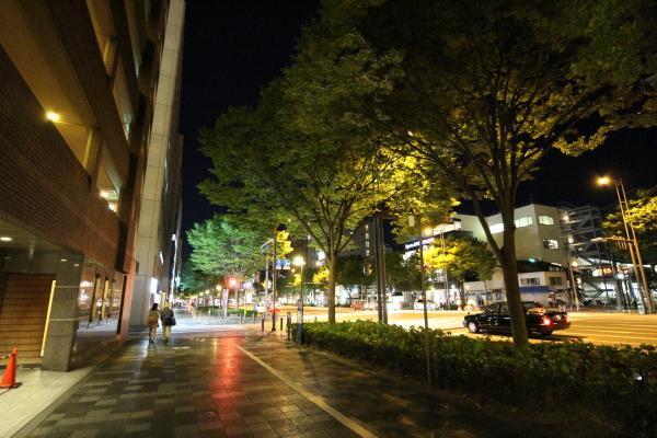 京都の夜①