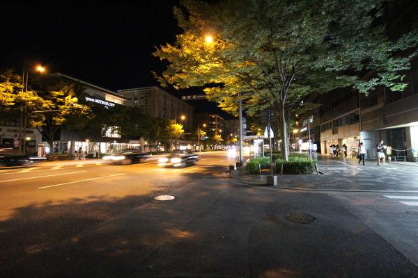 京都の夜②