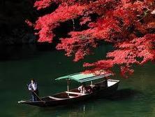 arashiyamakouyou.jpg
