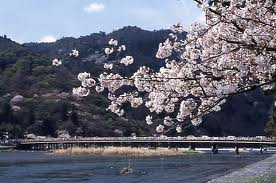 japan-trip-travel-arashiyama.jpg