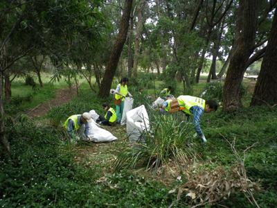 green health   49868  21.11.2012 011
