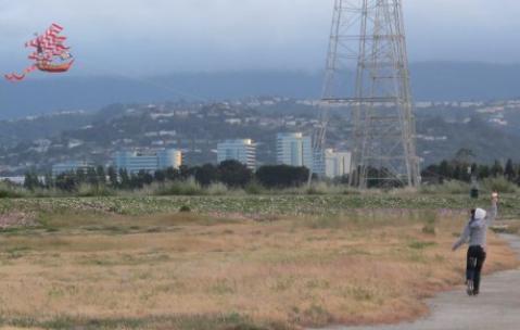 20110508.jpg