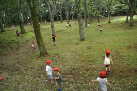 2006-01-18 年長城址公園花菖蒲園外保育 062 (800x536)