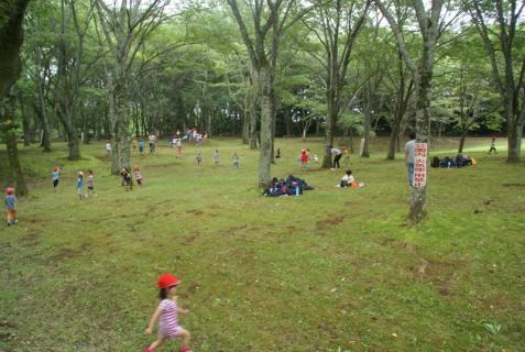 2006-01-18 年長城址公園花菖蒲園外保育 064 (800x536)