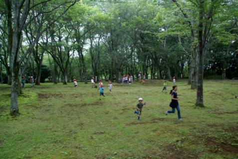 2006-01-18 年長城址公園花菖蒲園外保育 071 (800x536)