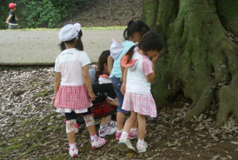 2006-01-18 年長城址公園花菖蒲園外保育 075 (800x536)