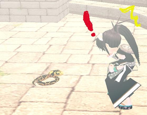 mabinogi_2011_01_03_041.jpg