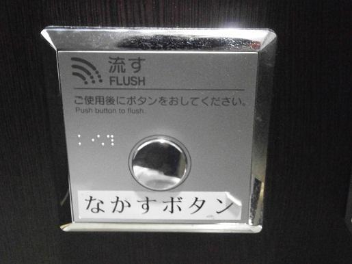 P4300099 - コピー