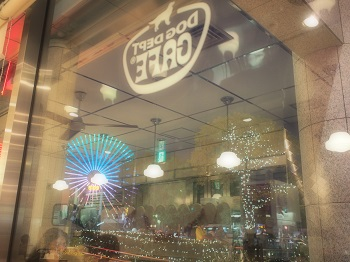 ジジ横浜へ 243