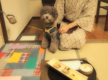 絆ジジさんごはん20140928-2