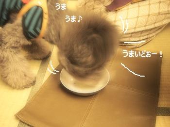 絆ジジさんごはん20140928-4