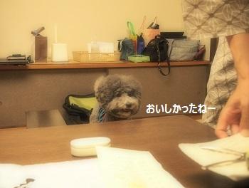 絆ジジさんごはん20140928-10