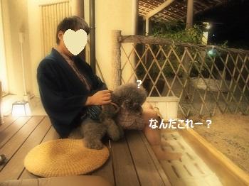 絆足湯20140928-2