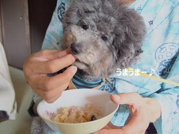 絆ジジさん朝食20140929-2