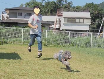 絆ドッグラン20140929-3