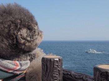 ジジさん城ヶ崎海岸へ20140929-8