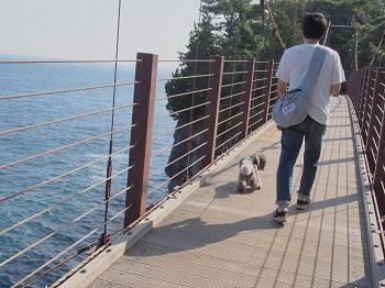ジジさん城ヶ崎海岸へ20140929-12
