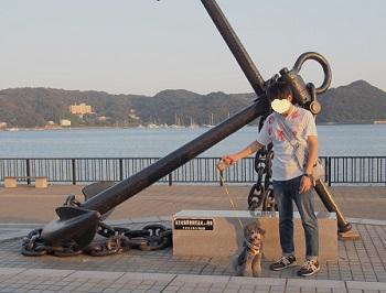まどが浜海遊公園20140929-3