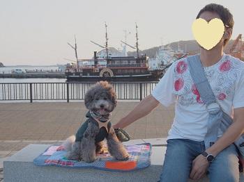 まどが浜海遊公園20140929-7