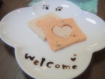 しろいぬカフェ20140923-4-2