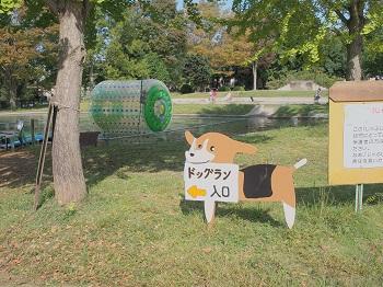 ポティロンの森20141011-5