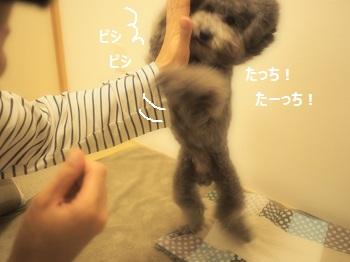じじタッチ-3