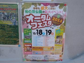 柏の葉公園20141018-3