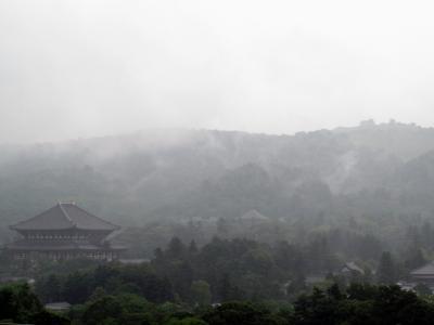 奈良水墨画像1