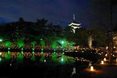燈花会 (1)