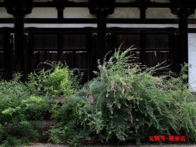 元興寺画像2-1